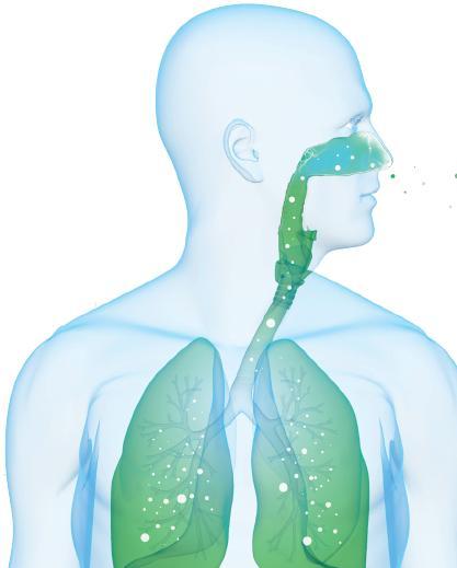 Información adicional purificadores el polvo en suspensión